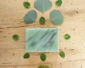 Eucalyptus Mint Herbal Soap, Natural Vegan Soap, Essential Oil Soap, Scented Cold Process Soap -- Eucalyptus Mint Soap