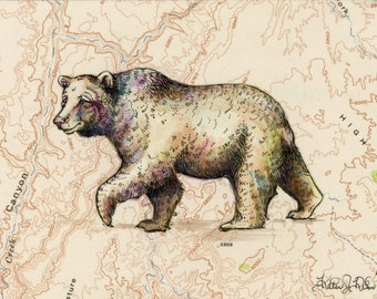 Bear art on topography map, Archival print, wildlife illustration, animal print, wall art, grizzly bear illustration, vintage style painting