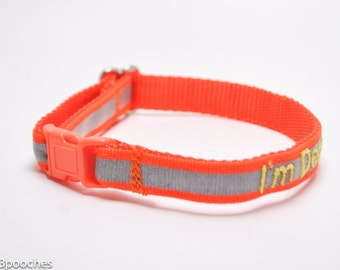 Personalized Reflective Safety Cat Collar/ Breakaway Collar/ Orange, Lime Green, Black, White, Pink, or Royal