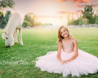 NEW! The Grace Dress in Blush and Sequins - Flower Girl Dress