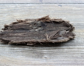 Small Rustic Driftwood Piece for Crafts and Beach Decor