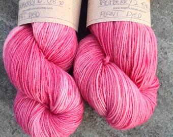 RASPBERRY 2  - Wool/Nylon super wash  yarn - plant dyed