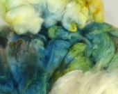 Hand Dyed Cormo COATED Wool Locks Spinning and Felting Fiber - Colorway Beachy