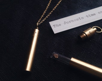 Jurassic Time Capsule Pendant Necklace- Brass Locket Necklace with Glass Vial Specimen - EDC Gift
