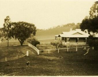 "Vintage Photo ""The Turnip Farm"" Snapshot Photo Old Antique Photo Black & White Photograph Found Photo Paper Ephemera Vernacular - 144"