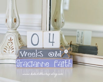 Custom Childrens Count Up. Opposite of a Countdown. Age Blocks. Childrens Blocks. Months Old. Weeks Old. Baby Item. Photo Shoot Idea.