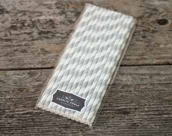 25 Silver Stripe Paper Straws for Birthday Parties, Candy Bar Ideas, Party Supplies, Party Favors, Eco Friendly PS021
