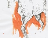 Original Sketch of a trot...