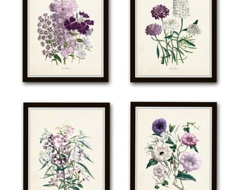 Les Fleurs Botanical Print Set No. 8, Botanical Prints, Giclee, Art Print, Antique Botanical Prints, Flower Prints, Cottage Style, Wall Art