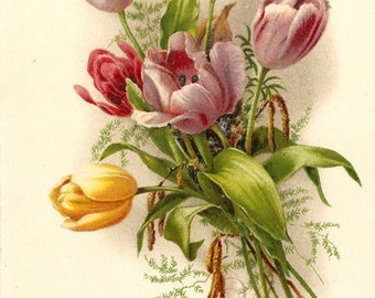 Multi Color Tulips Antique French Postcard, Chromolithograph Flower Bouquet Post Card from Vintage Paper Attic