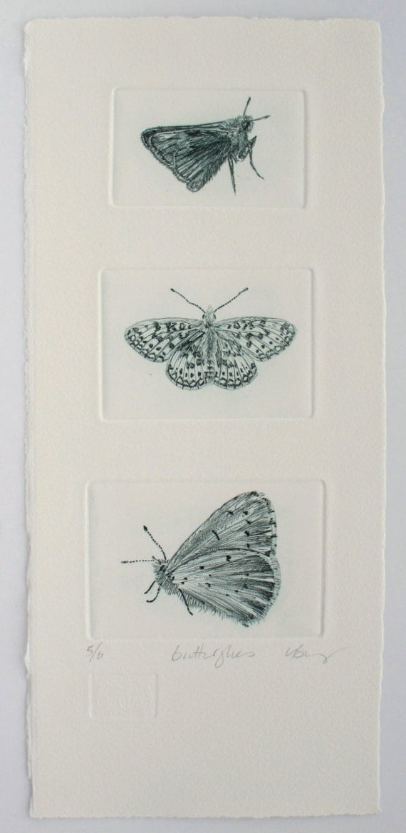 Butterflies. Drypoint trio hand made print. Skipper, Fritillary & Holly Blue Butterfly