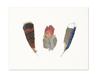 Archival Print of my Original Feather Drawings.