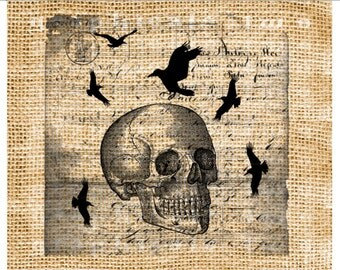 Halloween Skull Blackbirds Instant digital download image for iron on fabric transfer burlap decoupage scrapbook pillow card tote No. gt280