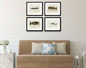 Whale Print Set, Whale Art, Posters and Prints, Nautical Decor, Beach Decor Coastal, Coastal Wall Art, Whales, Beach Art, Shore House Art