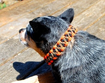 Custom Double Dragon Paracord Dog Collar, Choose Your Colors & Your Closure, Strong Dog Collar, Sturdy Dog Collar, Cute Dog Collar, Paracord