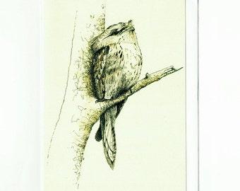 Tawny Frogmouth Greeting Card, Australian Birds, Wildlife, Watercolor Illustration