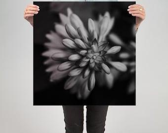 "Floral 8 ( 24"" X 24"" Print )"