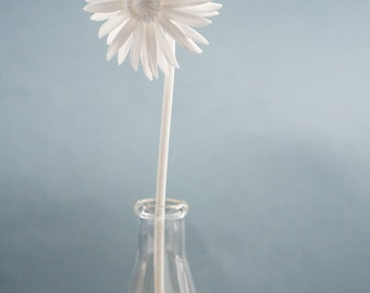 3D Printed Nylon Daisy- Perfect for Display and Gifting