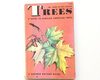 SALE PENDING Vintage Golden Nature Guide- Trees / Vintage Field Guide / Vintage Golden Guide / Book on Trees / Pocket Book / Homeschool Book