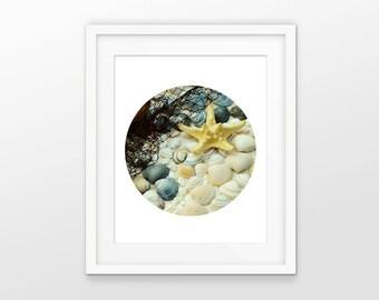 Starfish Print #3 - Seaside Vacation Print - Modern Circle Wall Art - Holiday Wall Art - Summer Beach Picture - Bathroom Decor - IG2581