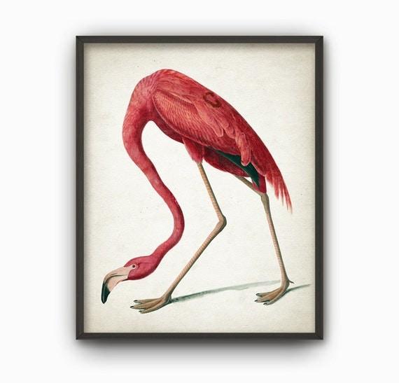 American Flamingo Print Flamingo Decor Flamingo Room Decor