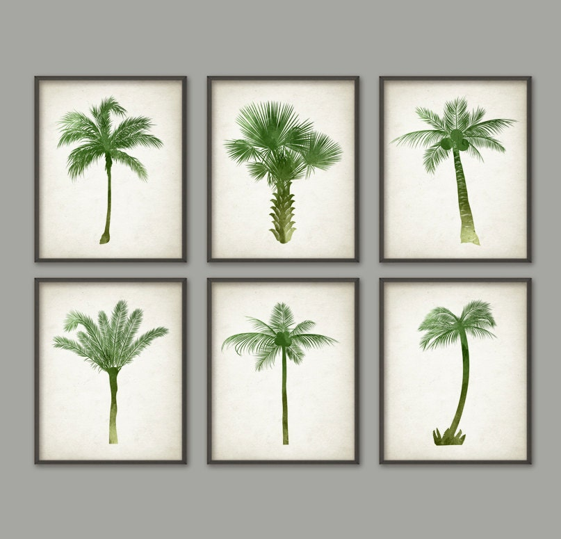 Palm tree botanical wall art print set of 6 modern home for Palm tree decorations for the home