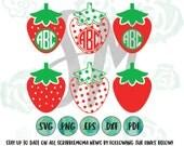 Strawberry Monogram, Strawberry SVG, Strawberry Picking, Fresh Fruit SVG - Digital vector for craft cutters - svg, eps, png, dxf, pdf