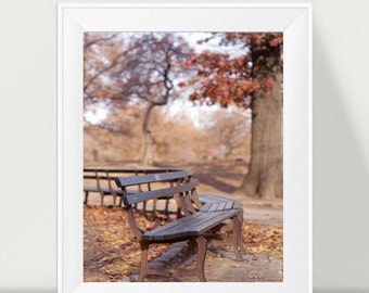 Central Park bench photography, brown copper wall art New York decor, nyc print vertical art, New York City autumn, bench art print 11x14