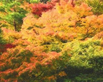 Autumn Impressionism, Autumn Trees, Colorful