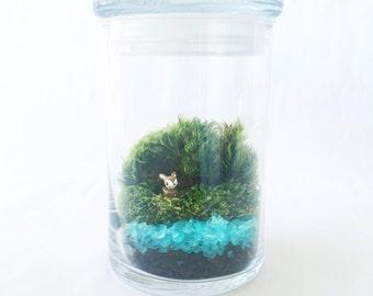 You're A Deer Moss Terrarium, TIny Fawn, Glass Terrarium, DIY Terrarium Kit