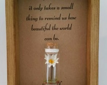 Daisy gift, miniature, daisy flower. Option to have it personalised.