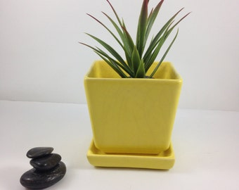Ceramic Planters,Grayson Arts,Grayson Planters,California,yellow,square,planter,pot,drip tray,succulent,gifts for her,gifts for gardeners