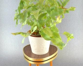 15% OFF Small Plant Stand, Small Tripod, Mini Flower Stool, Triangular Miniature Table, Mid Century German Furniture, Mini Kidney Bean Table