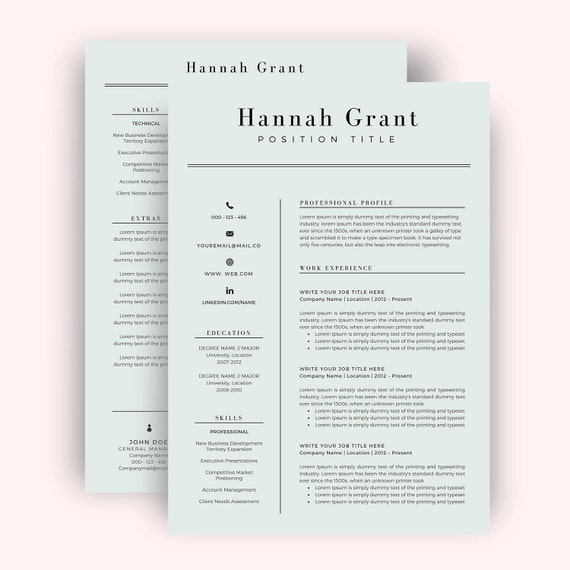 Professional Resume Template / CV Template For Word Two Page