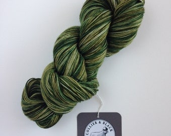 Discounted!**  GILLYWEED- Hand Dyed Superwash Sock Yarn- Superwash Merino Nylon- 462 yards