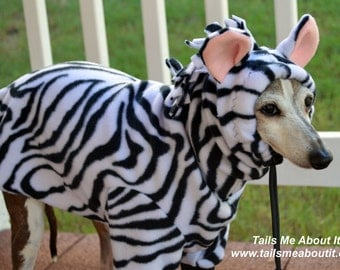 Zebra Fleece Dog Costume - Halloween