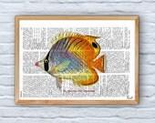 Book Print Dictionary or Encyclopedia Page Print- Book print Hawaiian Fish(Chaetodon) Print on Vintage Bookart artBPSL072