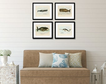 Whale Print Set of 4, Whale Art, Posters, Nautical Art, Beach Art, Coastal Decor, Beach Home Decor, Bowhead, Narwhal, Whales, Prints