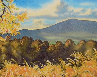 Preseli Autumn. The Preseli Hills, Pembrokeshire. Landscapes, Seascapes, Wildlife, Woodland, Flower Original watercolours and prints.