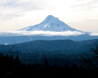 Mt. Hood Essence, Flower Essence, Vibrational Medicine, Ascension, Grounding, Gem Essence, Oregon, Intuition, Ancestors, Energy Healing,