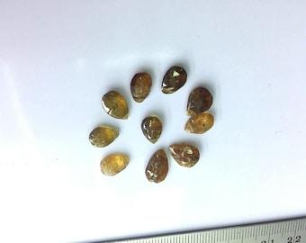 10 Pcs Natural India Genuine Brown Tourmaline Tear Drop Pendant 2.78 Grams Gemstone Spacer Loose Beads Jewelry Making Craft Supplies