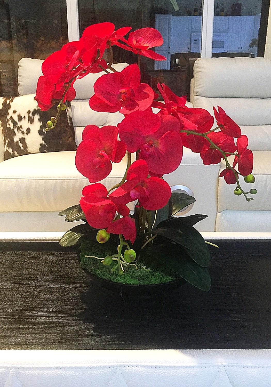 Sale red orchid arrangement and black
