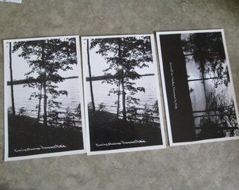 3 Antique Real Photo Postcards Traverse City, Michigan Scenery / Unused (PC41)