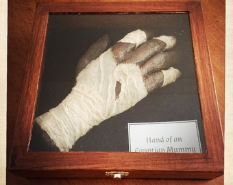 Mummified Egyptian Mummy Prop/Replica Hand - free postage in AU