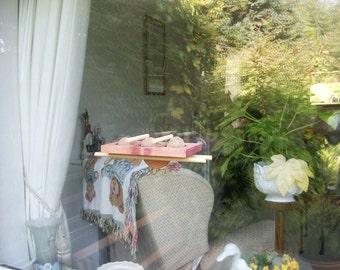 Window Fat Ball Tray Bird Feeder 4 Dowel Perch