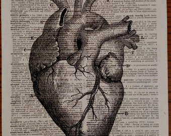 Vintage Dictionary Print, Dictionary Art Print, Vintage Dictionary Art, Dictionary Page Print, Anatomical Heart Print,