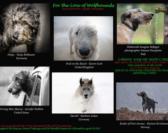 Irish Wolfhound Photo Note Cards