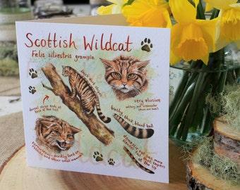 Scottish Wildcat Greeting Card