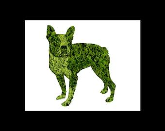 Boston Terrier Topiary Print