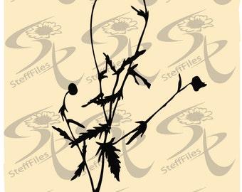 Vector flower flowering,SVG,DXF,AI, png, eps, jpg, elite decoration clipar Silhouettes,Download files, Digital, graphical